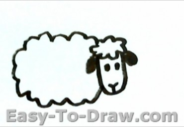 How To Draw Sheep for Kids