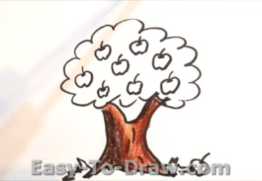 How to draw apple tree 04