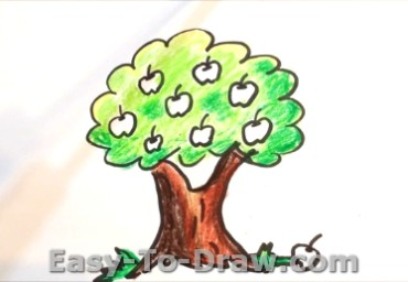 How to draw apple tree 05