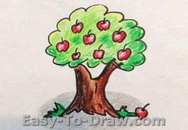 How-to-draw-apple-tree