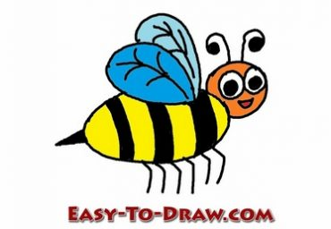 how to draw a cartoon honey bee for kids