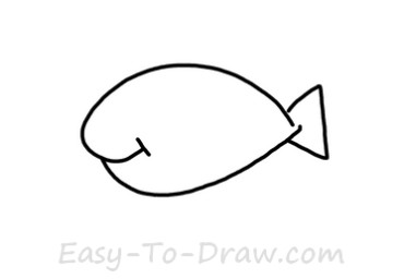 How to draw goldfish 01