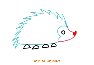How to draw hedgehog