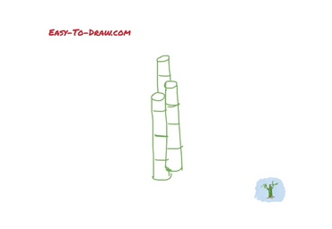 How to draw lucky bamboo 01